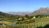 Winemaker-Led Private Wine Tasting Tours from Stellenbosch, Stellenbosch, Wine Tasting & Winery...