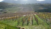 Winemaker-led Wine Tasting Tours, Franschhoek, Wine Tasting & Winery Tours