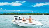 Ile Aux Cerfs Speedboat Excursion from Trou D'eau Douce, Trou d'Eau Douce, Jet Boats & Speed ...