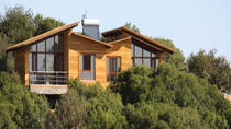 1-Night Ajloun Forest Reserve from Amman with Hotel, Amman, Overnight Tours