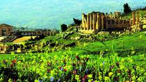 7-Night Best of Jordan Including 1 Night Dead Sea, Amman, Multi-day Tours
