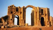 Jerash Ajlun and Amman Panoramic Full Day Tour from Amman, Amman, null