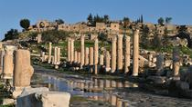 Private Day Tour to Umm Qais from Amman, Amman, Private Day Trips