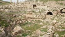 Private Full Day Tour to the Best Preserved Roman Ruins of Jordan Um Qais Pella and Jerash from ...