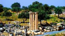 Private Full-Day Tour: Umm Qais and Ajloun from Dead Sea