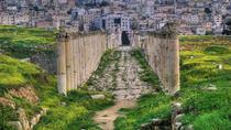 Private Jerash Half Day Tour from Dead Sea, Dead Sea, Day Trips
