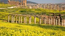 Private Tour: 2-Night 3-Day Mystical Jordan Tour to Jerash, Madaba, Mount Nebo, Dead Sea and Petra,...