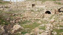 Private Tour: Full-Day Umm Qais, Pella, and Jerash Tour from Amman, Amman, Private Day Trips