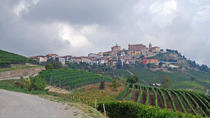 4-Days Wonderful Piedmont Tour from Milan, Milan, 4-Day Tours