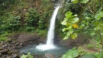ARENAL HIGHLIGHTS, La Fortuna, Eco Tours
