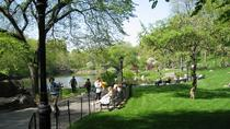 Central Park and Upper East Side Walking Tour, New York City, null