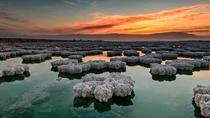 One Day Tour to Dead Sea From Amman, Amman, Day Trips