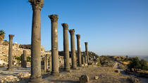 One Day Tour: Umm Qais, Jerash and Ajloun From Amman, Amman