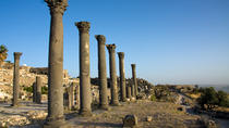 Private Full-Day Tour: Umm Qais, Jerash, and Ajloun from Amman, Amman, Walking Tours