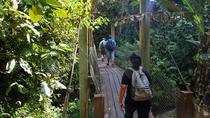 Kawang Forest Reserve Trekking, Kota Kinabalu, 4WD, ATV & Off-Road Tours