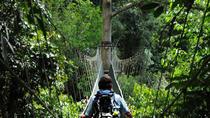 Kundasang Poring Hot Springs Day Tour, Kota Kinabalu, Day Trips