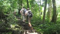 Private Day Tour: Cuc Phuong National Park from Hanoi, Hanoi, Private Day Trips