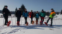 SnowShoe Tour near Brasov