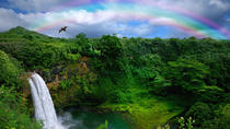 Kona Shore Excursion: Rainforest Waterfalls and Parker Ranch, Big Island (Hawaii)
