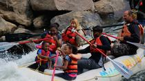 Half-Day Family Rafting in Durango, Durango
