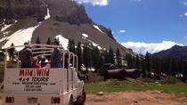 La Plata Canyon Jeep Tours near Durango and Cortez CO, Durango