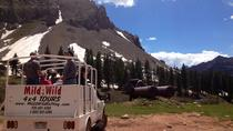 Tour in jeep di La Plata Canyon da Durango, Durango, 4WD, ATV & Off-Road Tours