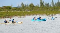 Bonefish Pond National Park Kayaking Tour and Fritter Making Lesson, Nassau, Kayaking & Canoeing