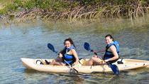 Bonefish Pond National Park Kayaking Tour and Fritter Making Lesson, Nassau, Kayaking & Canoeing