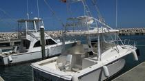 Puerto Plata Deep Sea Fishing Tour, Puerto Plata, Fishing Charters & Tours