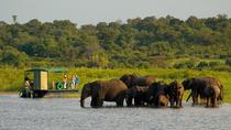 Chobe National Park 4X4 Day Safari and River Cruise, Victoria Falls, Photography Tours