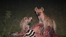 Guided Falls Tour, African Village Tour & Night Game Driver with Bush dinner, Victoria Falls, Day ...
