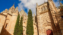 Private Tour to Avila and Salamanca from Madrid, Madrid, Day Trips