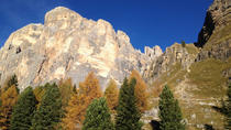 Cortina: the Queen of the Dolomites with Lunch from Venice, Venice, Private Day Trips