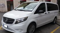 Shore Excursion by Taxi Mercedes Minivan to Florence and Pisa, Livorno, Ports of Call Tours