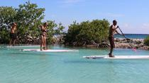 Stand Up Paddle Boarding Tour, Curacao, Other Water Sports