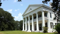 Small-Group Louisiana Plantations Tour with Lunch from New Orleans, New Orleans, Plantation Tours