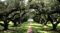 Small-Group Tour of Oak Alley and Laura Plantation from New Orleans, New Orleans