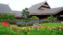 Doi Tung Palace and Singha Park, Chiang Rai, Full-day Tours