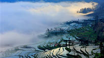 Longji Terraced Field & Yao Minority Women's Long Hair Show Full Day Tour, Guilin, Full-day Tours