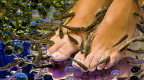 25-Minutes Natural Pedicure with Exotic Fish, Athens, Day Spas