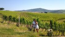 Brunello Vineyards Bus Tour, Siena