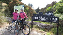 Ohakune Old Coach Road Mountain Bike Adventure, North Island, Bike & Mountain Bike Tours