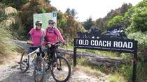 Ohakune Old Coach Road Mountain Bike Adventure, North Island, Bike & Mountain Bike Tours