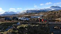 Half-Day Breiddalur Highlights Tour, East Iceland, Day Trips