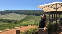 Small-Group Bickley Valley Wine Tour, Perth, Wine Tasting & Winery Tours