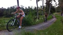 Downhill Bali Hidden Cycling Tour, Ubud