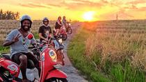 Ubud Small-Group Scooter Tour with Hotel Transfers , Ubud, Day Trips