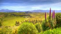 Full-Day Wine Gourmet and Scenic Delight Tour of Marlborough from Blenheim, Blenheim, Wine Tasting ...