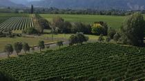 Half-Day Marlborough Gourmet Tasting Tour from Blenheim, Blenheim, Wine Tasting & Winery Tours