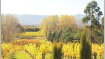 Private Tour: Marlborough Winter Wine and Scenic Tour from Blenheim, Blenheim